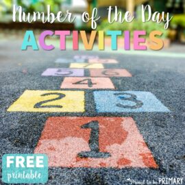 How do you build your student's number sense in Kindergarten and first grade? Check out this number of the day post that details how to implement it into your routines and what math and number concepts to teach. Head there for a FREE printable for assessing number sense.