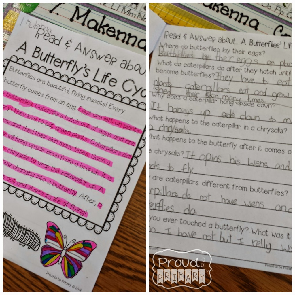spring Archives – Proud to be Primary