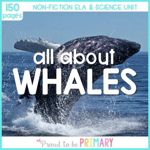 whale science unit for kids
