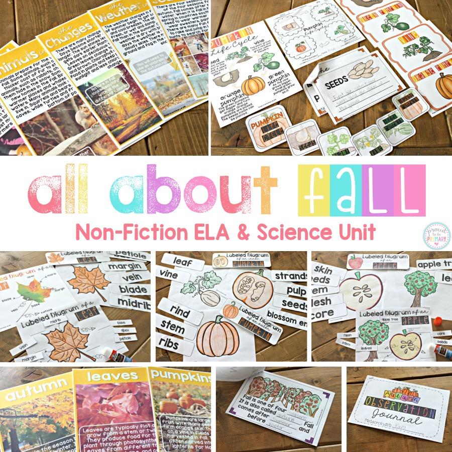 Looking for the perfect fall resource for primary? Check out the engaging fall science and non-fiction classroom activities for kids about leaves, pumpkins, apples, and more! You won't want to miss the science experiments!
