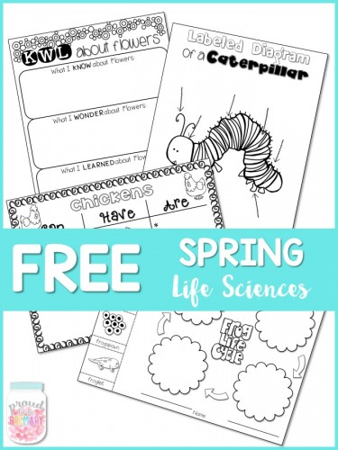 Check out this post filled with spring activities for kids in primary. Art, ELA and poetry, and life sciences activities, as well as spring books and videos to share. Head there NOW to grab your FREE resources!