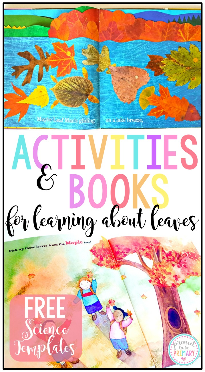 Fall is the perfect time to get outside into nature, explore the changes, and go on a leaf hunt. Read a few of the children's books and use the activities for learning about leaves this autumn in this post. Grab FREE leaf science templates to support your classroom lessons! #fallactivities #leafscience #fallscience #scienceforkids #autumnactivities #leafhunt