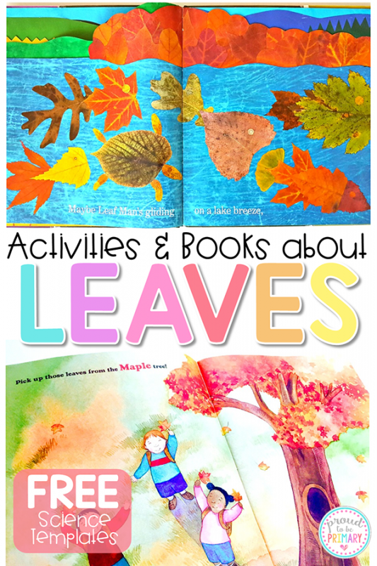Leaf Activity - activities & books PIN