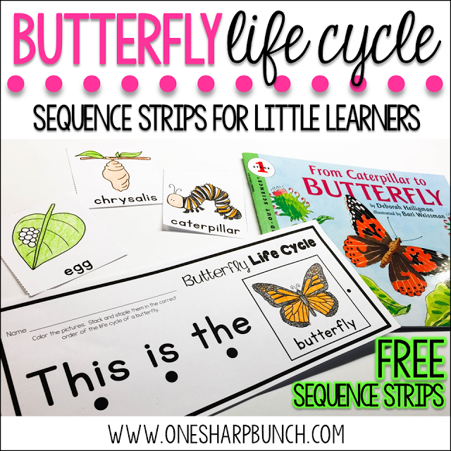 One Sharp Bunch - Butterfly Life Cycle Freebie