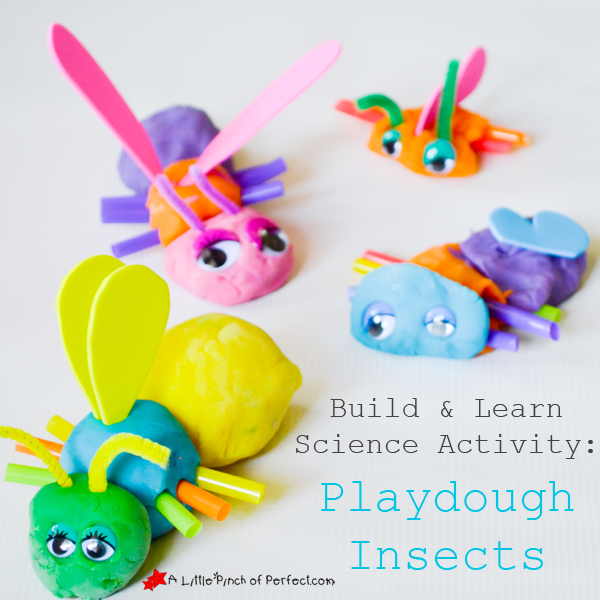 A Little Pinch of Perfect - Insect Science Activity