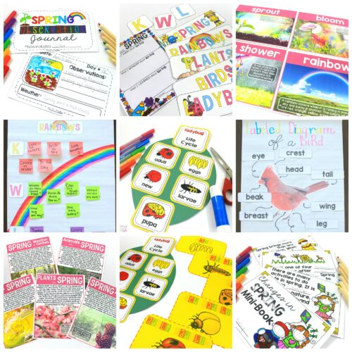 spring science unit by proud to be primary