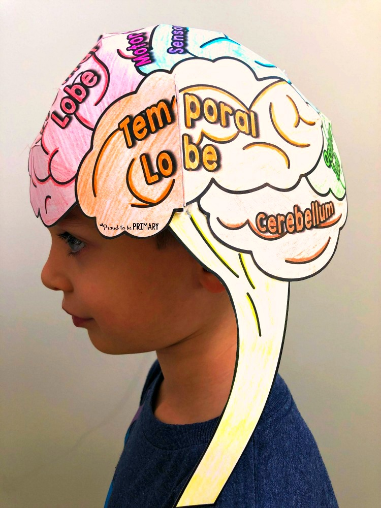 growth mindset activities - brain hat activity for teaching growth mindset
