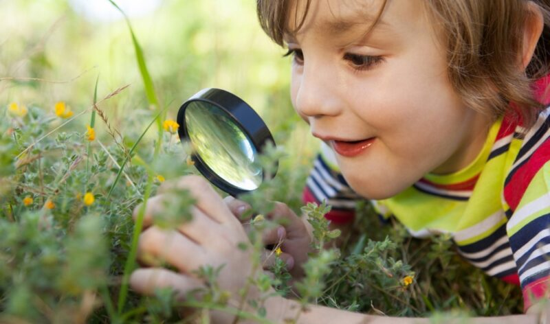 boy looking at flowers through a magnifying glass